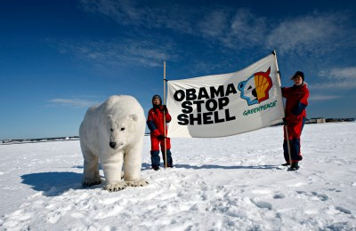 obama stop shell