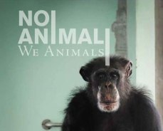 copertina-we-animals-299x240
