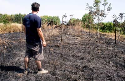 """Simmaco Perillo, sul terreno bruciato della sua cooperativa """"Al di là dei sogni"""", il bene confiscato """"Alberto Varone"""" di Maiano di Sessa Aurunca (Caserta)."""