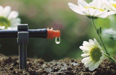 irrigazione-a-goccia-modena-marano-sul-panaro