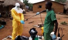 BioEcoGeo_ebolavirus1