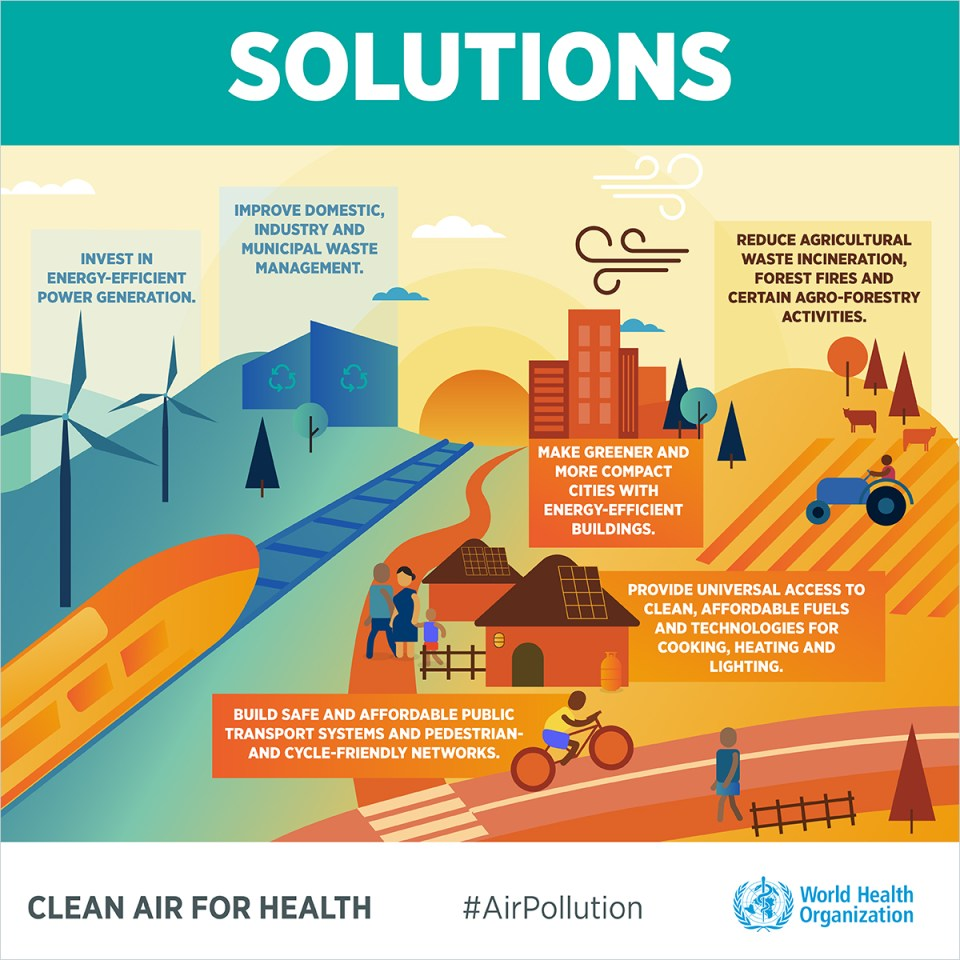 Air-pollution-INFOGRAPHICS-English-6-1200px