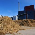 Biorefinery Prospects in India