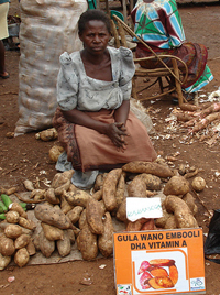 A Ugandan retailer marketing her orange sweet potatoes. Image by Harvest Plus.