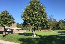 warm-up-im-golfpark-renneshof-zum-day-of-champions-gleich-gehts-los-das-wetter-ist-ja-ein-traum-drückt-mal-die-daumen