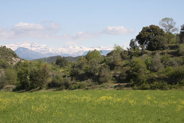 Pre-pyrenees in Spain in spring.