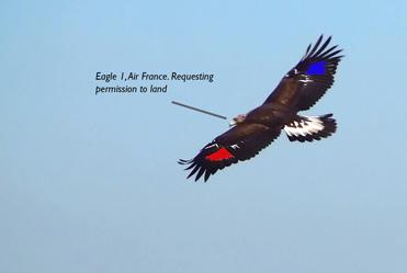 Eagle Air France