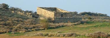 Drylands of Lleida