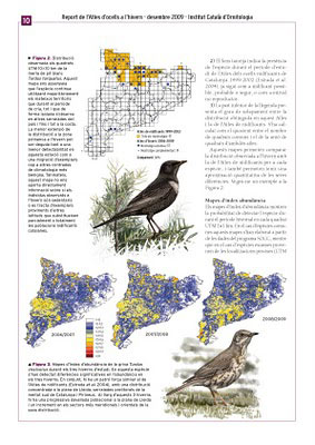 Catalan Winter Bird Atlas page layout and illustrations