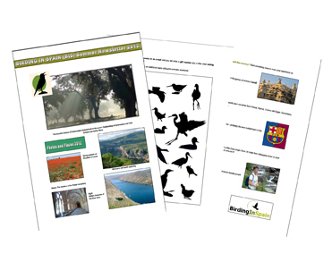 Birding In Spain 2012 Newsletter now available