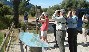 Birding In Spain: Birders in els Ports, Catalonia