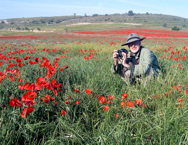 Mikko in a field of poppies. Birding in Spain is fun.