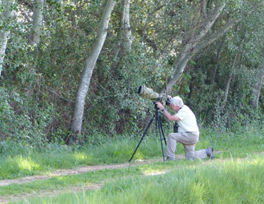 Steve Lane photographing birds in Catalonia.