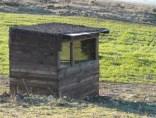 Birding In Spain Goshawk hide in Catalonia