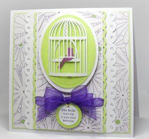 a little birdie card
