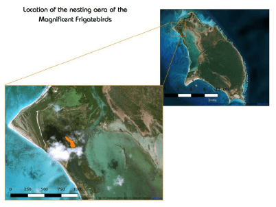 Map-Location of nesting area on Barbuda-Codrington Lagoon