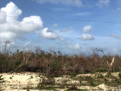 Coastal areas were especially hard by Irma (Photo by Jeff Gerbracht)