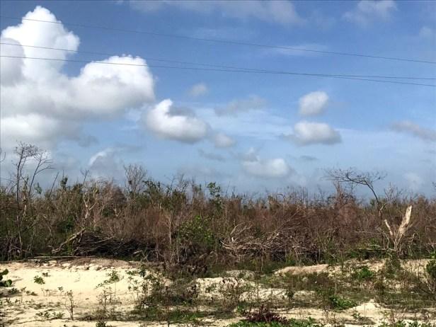 Coastal areas were especially hard by Irma (Photo by Jeff Gerbracht)