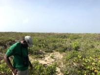 Lenn Isidore inspecting the habitat (Photo by Jeff Gerbracht)