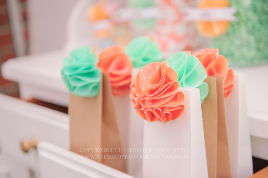 party bags in peach and mint pom poms