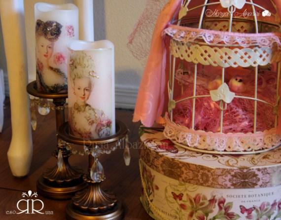 Marie-Antoinette-Vintage-Birthday-Party-Bird-Cage
