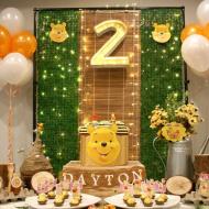 Winnie-The-Pooh-Bear-Birthday-Party-2-Backdrop