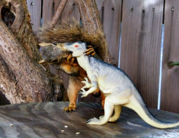 Prehistoric kiss