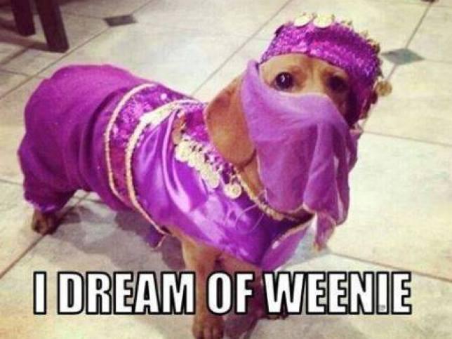 I Dream Of Weenie