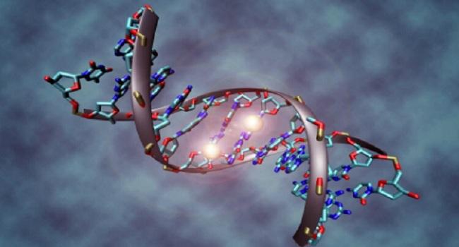 isik-yardimiyla-gen-degisimi-yapildi-bizsiziz