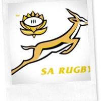 BWF: Pieter de Villiers & The Springboks