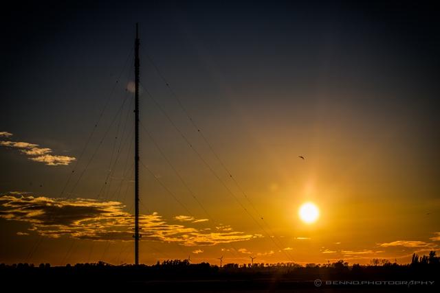 Rhein-Strand im Sonnenuntergang