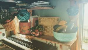 An everything shelf! In a TinyHouse! CSA Keyboard Plants Necessitieshellip