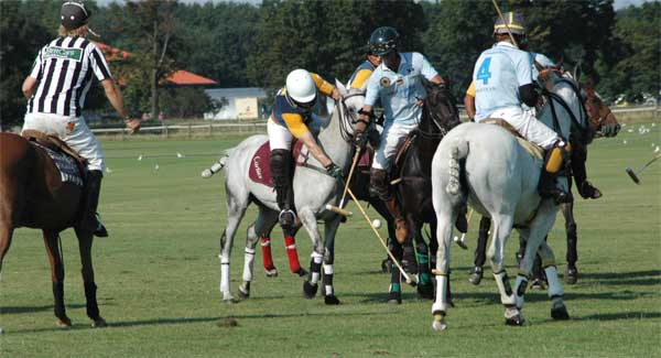 polo_match_phoeben
