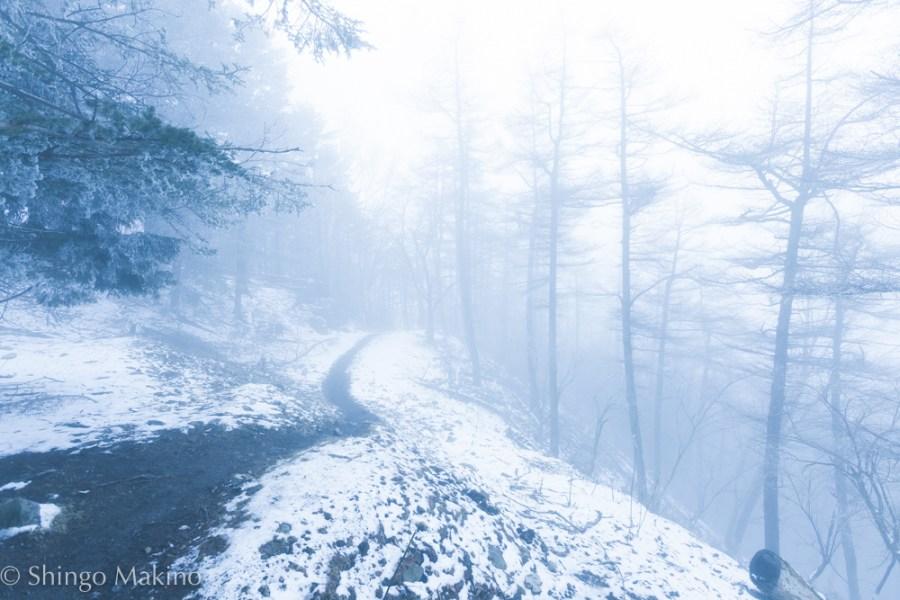 霧 七ツ石 山 mountain fog