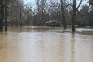 The Bachmayer Park side of the River Raisin was underwater. In the background, the Ricker Pavilion sits in deep water.