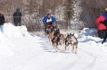 2011 GCI Open North American Championship sled dog race