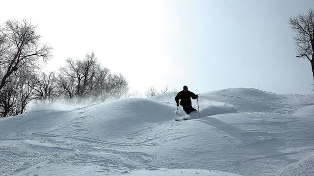 blog-da-alice-ferraz-ny-ski