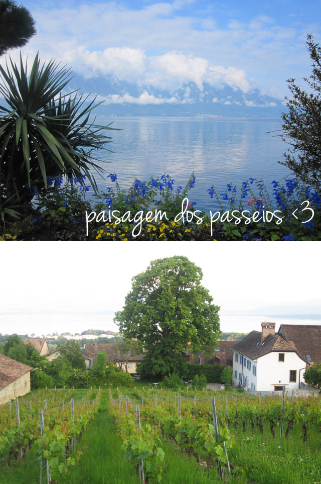 blog-da-alice-ferraz-ferias-suica-carro (2)