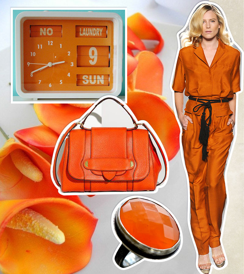 mood-board_papaya_02