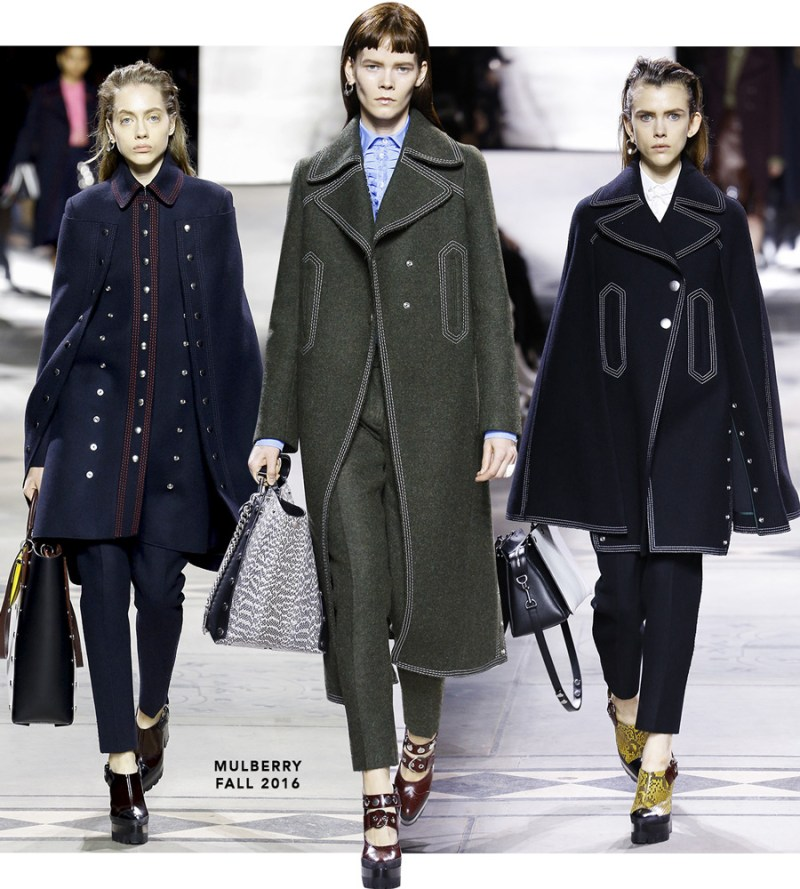 mulberry_fall2016
