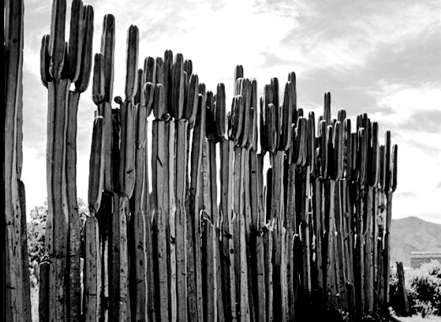 foto realizada en Oaxaca por Juan Rulfo