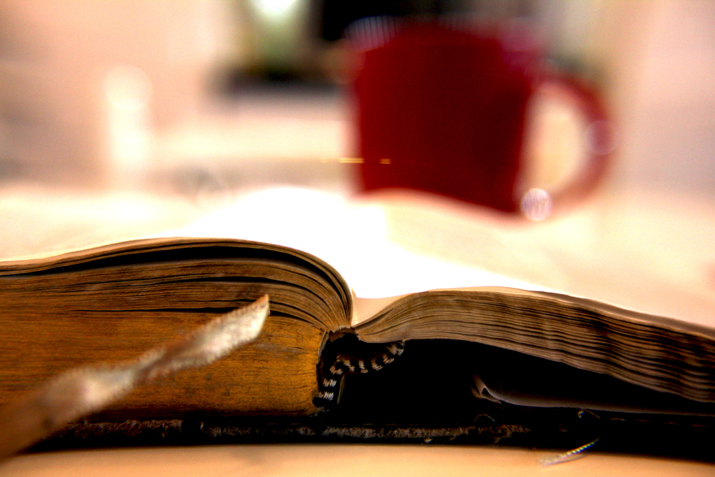 An open Bible being read