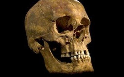 Remains of the Day: Lost 500 Years, the Bones of Richard III Have a Tale to Tell