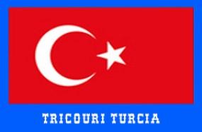 steag turcia