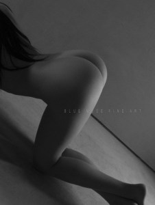 Blue Muse Fine Art with Missy Ly. Tush. 2013.