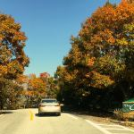 Along Blue Ridge Drive on Devils Knob at Wintergreen.
