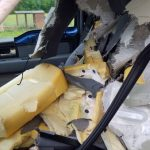 Bear Inside Car Last Week In Roanoke Not Only One : One Recently At Wintergreen Too!