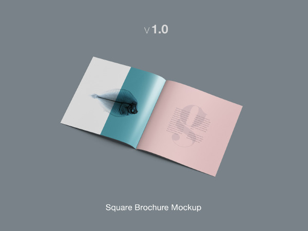 Square Brochure Mockup Template