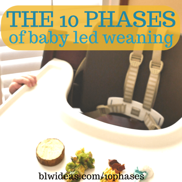 10 phases of baby led weaning
