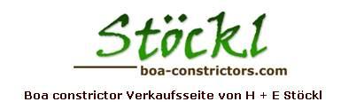 Boa constrictor Verkaufsseite von H+E Stöckl